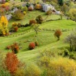 Stock Photo: Autumn mountain meadow