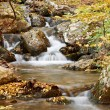 Autumn scenery with stream — Stock Photo #9150225
