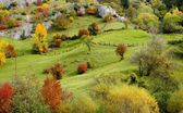 Autumn mountain meadow — Stock Photo