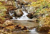 Scenario di autunno con flusso — Foto Stock
