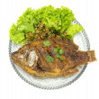 Fired fish with thaiherb — Stock Photo
