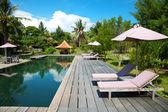 Swimming pool at an eco resort — Stock Photo
