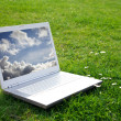 White Laptop in park — Stock Photo