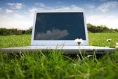 White Laptop in park — ストック写真