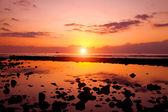 Sunset beach and rocks — Stock Photo