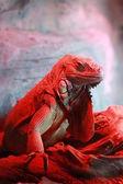 Red lizard — Stock Photo