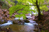 The river near a waterfall — Stock Photo