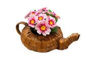 весенние цветы в стакане — Стоковое фото