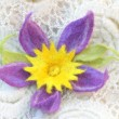 Violet flower made of felt - hairpin, brooch - Stock Photo