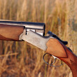 Stock Photo: Hunting double-barrelled gun