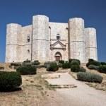 Castel Del Monte — Stock Photo #9114189