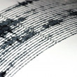 Stock Photo: Seismogram