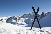 Pair of cross skis in snow — Stock Photo
