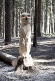 Holzstatue der katze — Stockfoto