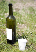 Bottle of wine in grass — Stock Photo