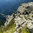 Panorama of The Krkonose Mts. National Park-Czech Republic — Stock Photo #10270124