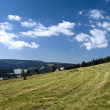 Panorama of The Krkonose Mts. National Park-Czech Republic — Stock Photo #10270126