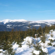 Stock Photo: Winter panorama of Krkonose mountains, Czech Republic