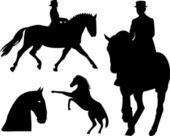 Horse silhouette on white background — Stock Photo