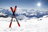 Pair of cross skis — Stockfoto