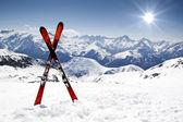 Par de cruz esquís — Foto de Stock