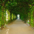 Schonbrunn garden, Vienna — Stock Photo