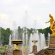 Grand Cascade fountain in Petergof, Russia — Stock Photo
