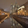 St-Petersburg, Russiat night — Stock Photo #9202530