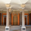 The columns of the Mikhailovsky Palace in St. Petersburg, Russia — Stock Photo