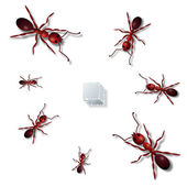 Ants and sugar — Stock Vector