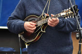 Man Playing Mandolin — Stock Photo