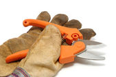 Pruning Shears and Leather Glove — Stock Photo
