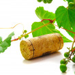 Wine cork and a grapevine — Stock Photo