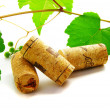 Wine corks and grape vine - Stock Photo