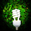 Light bulb in green grass — Stock fotografie
