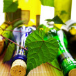 Assorted wine bottles and corks with grape vine — Stock Photo