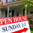 Open House — Stock Photo #9323961