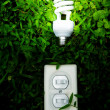 Stock Photo: Green power