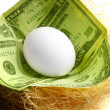 Stock Photo: Nest-egg concept