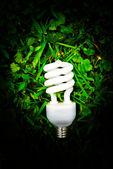 Light bulb in green grass — Stock Photo