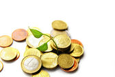 New life growing from a pile of Euro coins — Stock Photo