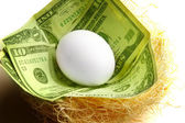 Nest-egg concept — Stock Photo