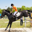 Stock Photo: Jockey and black horse jumping