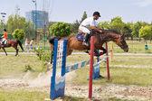 Jockey and horse jumping — Stock Photo