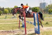Jockey und pferd springen — Stockfoto