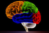 Colorful Brain on Black — Stock Photo