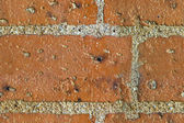 Red Bricks Seamless Texture — Stock Photo