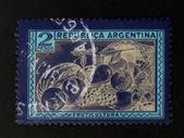 Fruit postage stamp - circa 1950 — Stock Photo