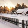 Постер, плакат: House is surrounded by snow in woods at dawn