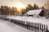 House is surrounded by snow in woods at dawn — Stock Photo